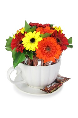Gerberas and tim tams