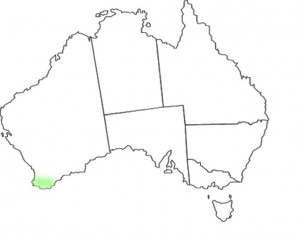 Caladenia brownii map