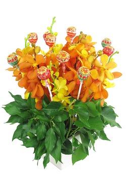 Orchids Lolipops