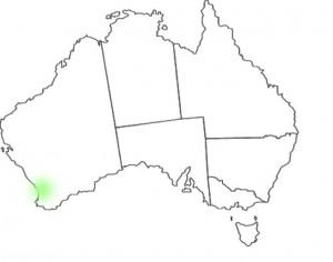 Stylidium brunonianum Benth. map