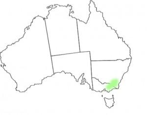 Wahlenbergia gloriosa Lothian map