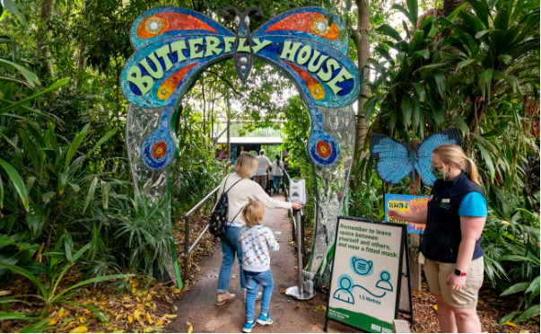 Butterfly House at Melbourne Zoo