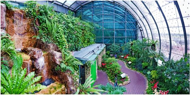 Singapore Changi Airport Butterfly Garden